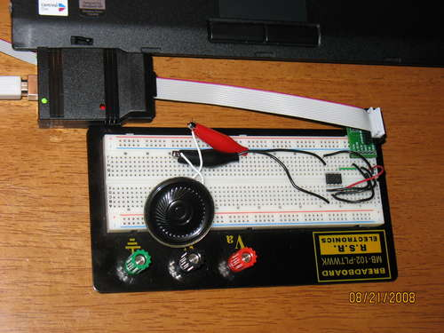 Annoying Beeper using Microcontroller ATtiny13