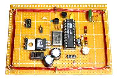 89Sxx Development Board using microcontroller