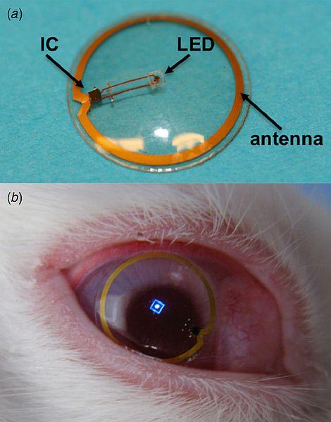How Contact Lens Displays Work