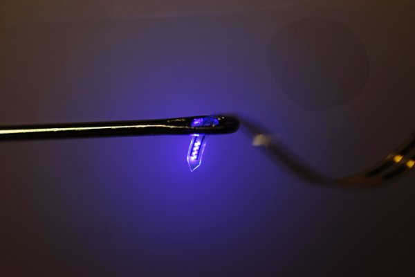 A bright idea: Tiny injectable LEDs help neuroscientists study the brain
