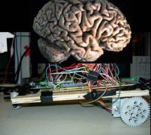 Neural net robot using ATMega32