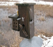 A Portable, Automated, web-based Bird Trapping Mechanism Using Atmega644