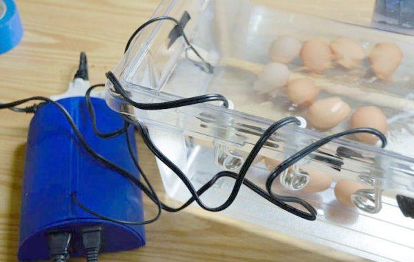 Final Project: built a sous-vide immersion cooker